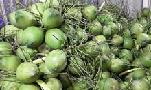 Giá buôn dừa nạo tại Bến Tre hôm nay 11-10-2017