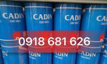 Nhà phân phối sơn Epoxy PU Cadin ngoài trời giá rẻ tại TPHCM