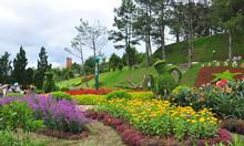 Tour du lịch Nha Trang Đà Lạt 1 ngày trọn gói