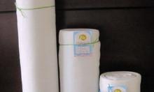 Nhà lưới, lưới chắn côn trùng Thái Lan, lưới chắn côn trùng công nghệ