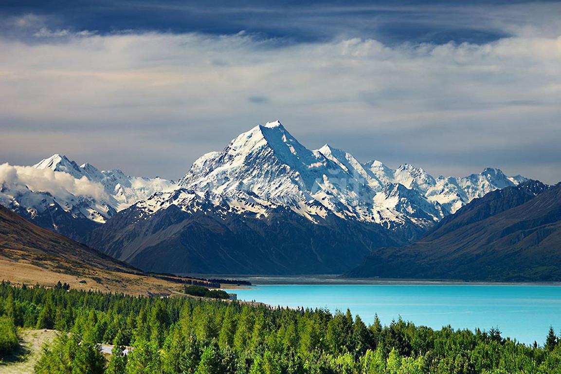 Vé máy bay đi New Zealand giá rẻ tại dulichviettoday.com