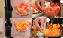 Máy làm kem hoa quả trái cây tại nhà chỉ sau 1 phút