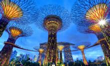 Vé máy bay đi Singapore khuyến mãi tại Việt Today
