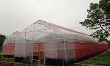 Vòi tưới phun mưa, hệ thống tưới phun mưa, vòi phun toro, vòi phun