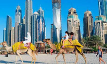 Tour Hà Nội - Dubai - Sa mạc Safari - Abu Dhabi