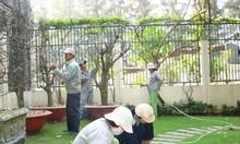 Dịch vụ chăm sóc cây xanh và không gian sân vườn, cắt cỏ, trồng mới cỏ