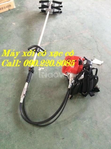 Máy xạc cỏ Honda GX35 giá bao nhiêu? mua ở đâu rẻ?