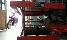 Xe nâng chậu kiếng, xe nâng chậụ cảnh Đà Nẵng, Quảng Nam 0934588269