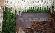Cỏ nhựa treo tường, tấm cỏ nhựa trang trí tường, cỏ nhựa dán tường