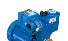 Bán máy bơm nước đẩy cao bơm nước máy