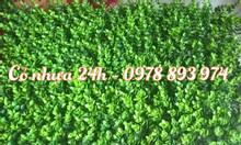 Thi công tường cỏ giả, tường cây giả giá rẻ tại Hà Nội