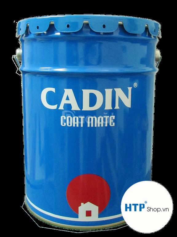 Đại lý Sơn chịu nhiệt CADIN 600-1000 độ giá tốt