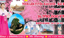 Tour du lịch liên tuyến Hàn Quốc - Đài Loan