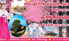 Tour du lịch Hàn Quốc + Đài Loan giá rẻ