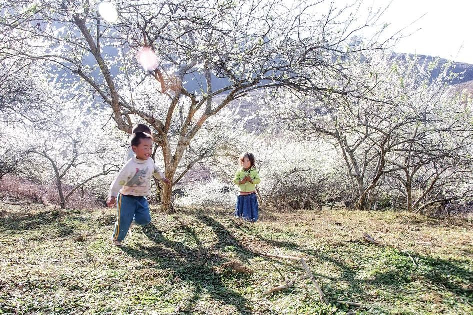 Đi xa trải nghiệm và trưởng thành cùng con yêu tại Mộc Châu