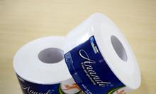 Tặng hộp đựng giấy vệ sinh cuộn lớn khi mua giấy vệ sinh cuộn lớn