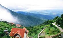 Picnic núi Tam Đảo - Vui chơi, cắm trại trên mây