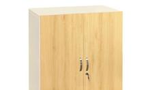 Tủ tài liệu TSG03 - 2 văn phòng - tủ thấp