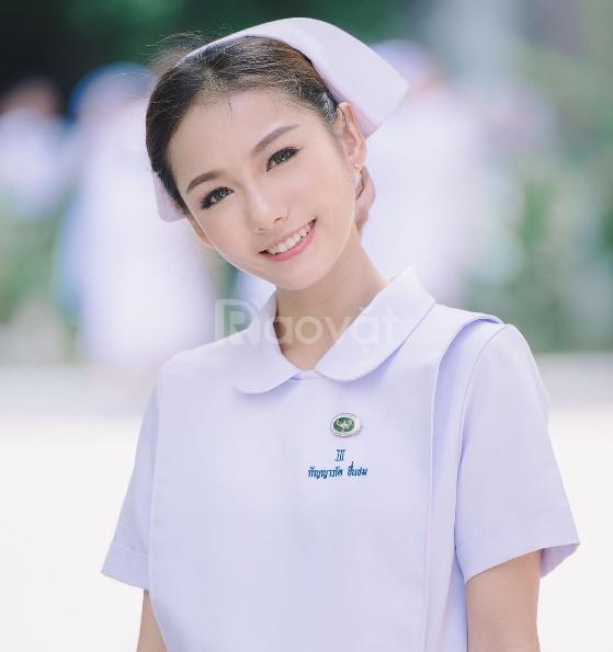 Học chứng chỉ nha khoa ở đâu tp Hồ Chí Minh năm 2018