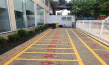 Đại lý chuyên phân phối và thi công sơn kẻ vạch Joton tại Bình Tân