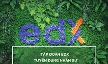 Tập đoàn EDX tuyển dụng nhân sự mảng quảng cáo Facebook