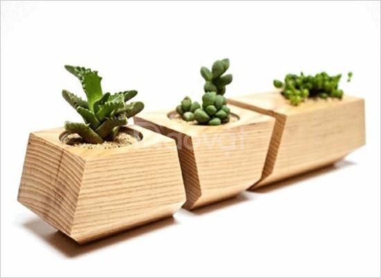 Chậu gỗ, bồn gỗ, dàn gỗ trồng cây giá rẻ