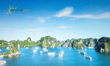 Phuket bay thẳng - Đảo Phi Phi & Vịnh Phang Nga