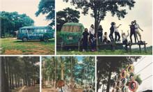 Sơn Tinh Camp - làng văn hóa Đồng Mô, Ba Vì 1 ngày cho bé