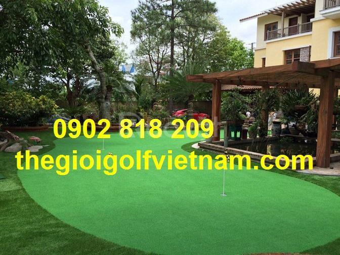 Cỏ golf putting giá rẻ trên thị trường