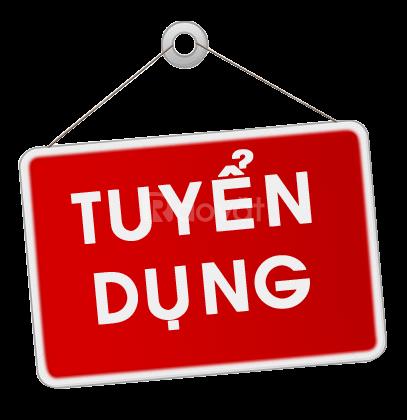 Tuyển Sale dự án chung cư khu vực Hà Nội