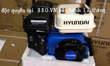 Phân phối động cơ xăng Huyndai HGE390