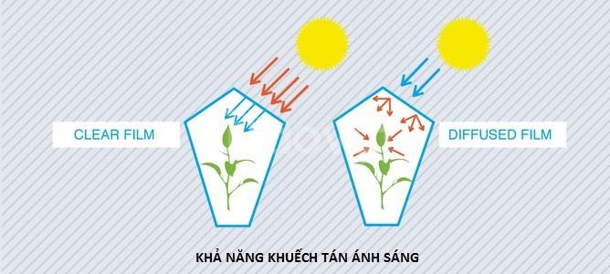 Đại lý cung cấp màng kính nông nghiệp nhập khẩu giá rẻ