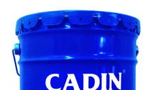 Cung cấp sơn chịu nhiệt Cadin cho công  trình nhà máy sản xuất