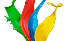 Sơn lót chống rỉ giá rẻ là dòng sơn chống rỉ poly expo
