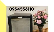 Tủ lạnh mini khách sạn, tủ mát khách sạn, tủ mát mimibar Homesun HN