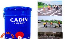 Cần mua sơn kẻ vạch đường Cadin màu vàng, màu trắng giá rẻ tại TPHCM