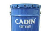 Sơn chịu nhiệt Cadin 600 độ C màu xám giá rẻ cho công trình