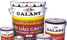 Sơn dầu Galant giá rẻ tại Tân Bình