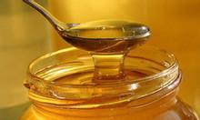 Sự thật về  mật ong rừng, mật ong nuôi