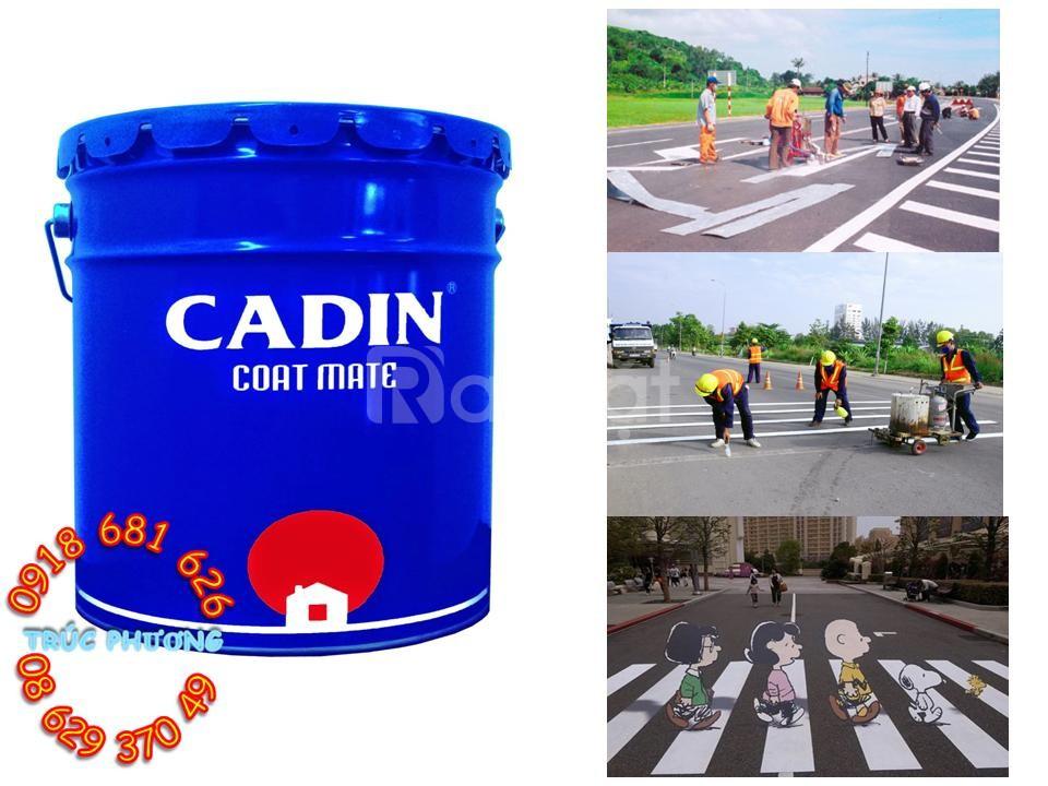 Đại lý sơn kẻ vạch đường Cadin giá rẻ TPHCM