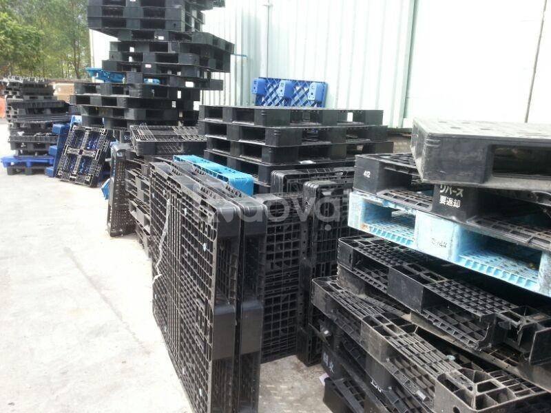 Công ty mua bán cao bản nhựa Hải Phòng