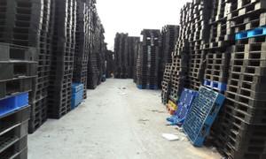 Công ty cho thuê mua bán pallet nhựa Bắc Giang