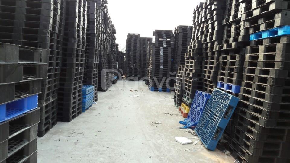 Công ty cho thuê mua bán pallet nhựa Hải Phòng