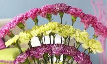 Khóa học chuyên nghiệp cắm hoa nghệ thuật liên tục được khai giảng