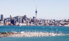 Những điều thú vị không thể bỏ lỡ khi đi du lịch New Zealand