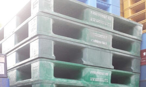 Công ty cho thuê mua bán pallet nhựa Quế Võ, pallet nhựa cũ Quế Võ