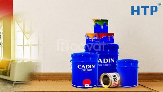 Đại lý sơn vân bông Cadin giá rẻ đẹp cho sắt thép hàng rào tại SG