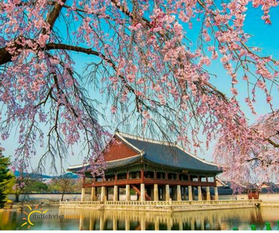 Tour du lịch Seoul - Everland - Nami 4N3Đ