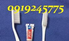 Cung cấp bàn chải đánh răng dùng 1 lần cho nhà nghỉ giá rẻ tại Hà Nội