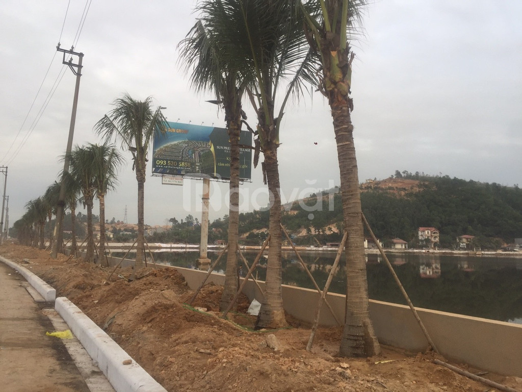 Đất nền đồi biệt thự nghỉ dưỡng Hạ Long  (ảnh 3)